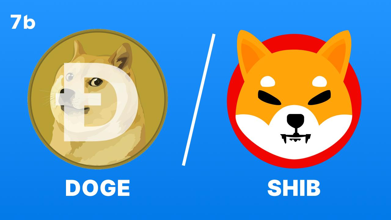 Shiba vs Doge